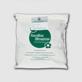 Semilla ALCORQUES 1 Kg