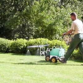 Tratamiento fitosanitario integral para tu jardín