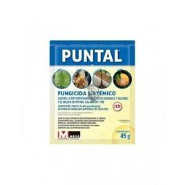 Puntal WG Fungicide 45 gr (Fosethyl-Al80%)