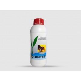 Protector biologico contra hongos Quintet Forte 1 lt