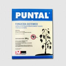 Fungicida Puntal WG de 100 gr (Fosetil-Al 80%)