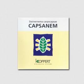 Nematodos Capsanem 50 millons (Spodoptera)