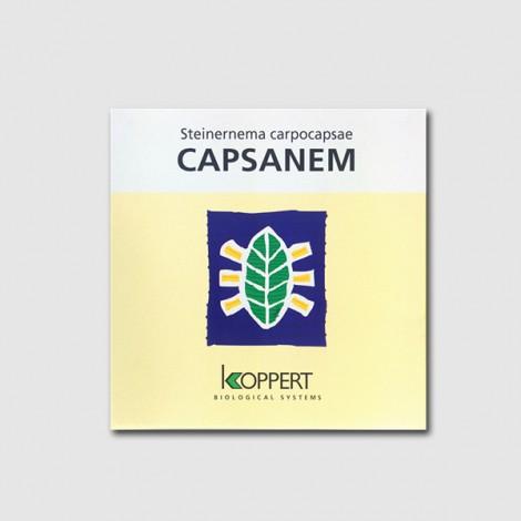 Nematodes Capsanem 50 millons (Spodoptera)